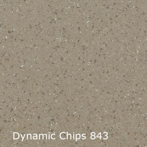 Dynamic Chips